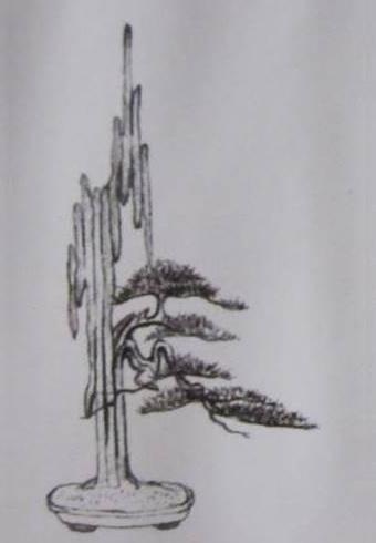 Bản vẽ 1