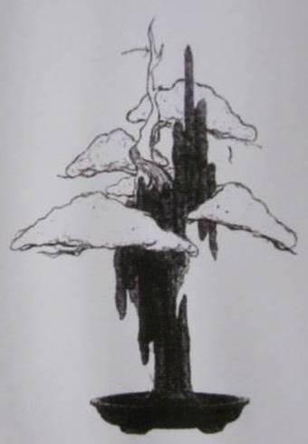 Bản vẽ 2