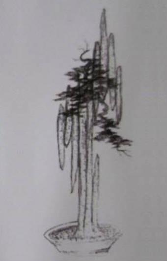 Bản vẽ 3