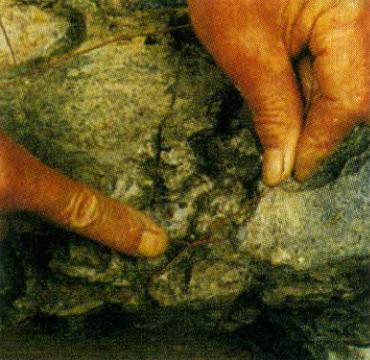 Cố định dây trên đá