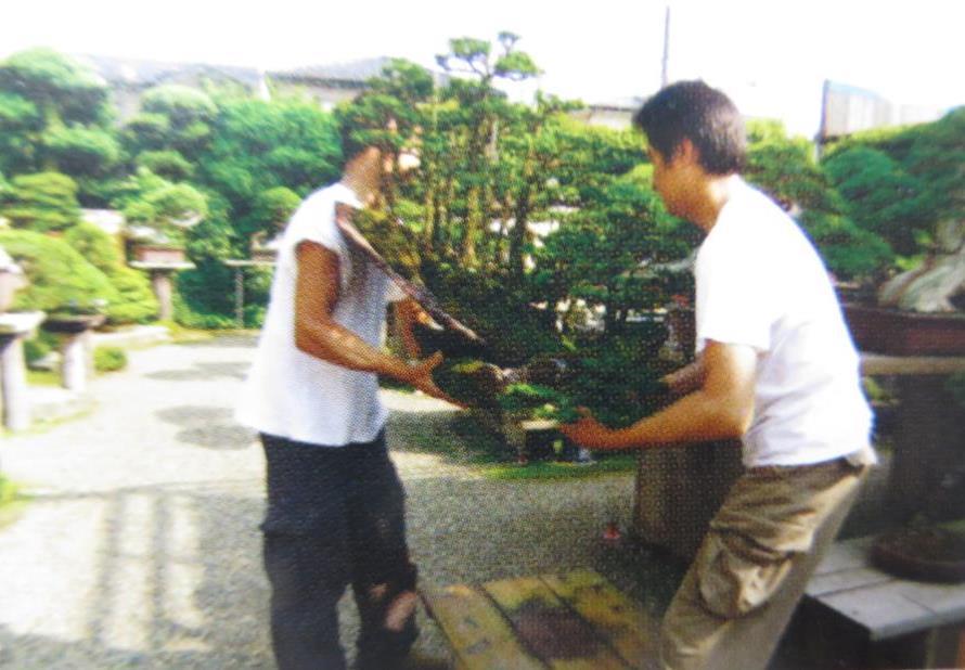Học bonsai